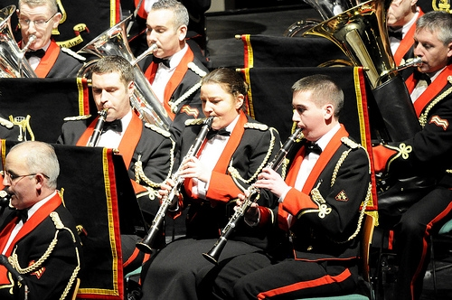 Defence Forces Massed Bands Concert